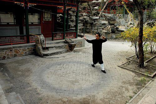 http://www.freedommartialart.com/images/baguacircle.jpg Baguazhang